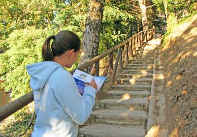 Descubre la modalidad Book-way de Pequevisitas